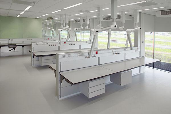 dsf动物实验室