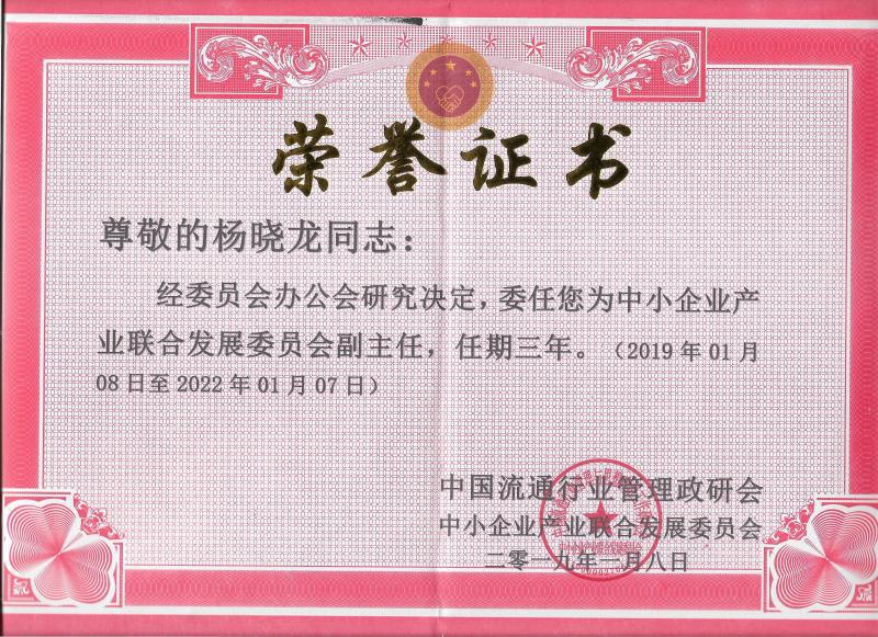 中国流通行业管理政研会委任杨晓龙为中小企业产业联合发展委员会副主任