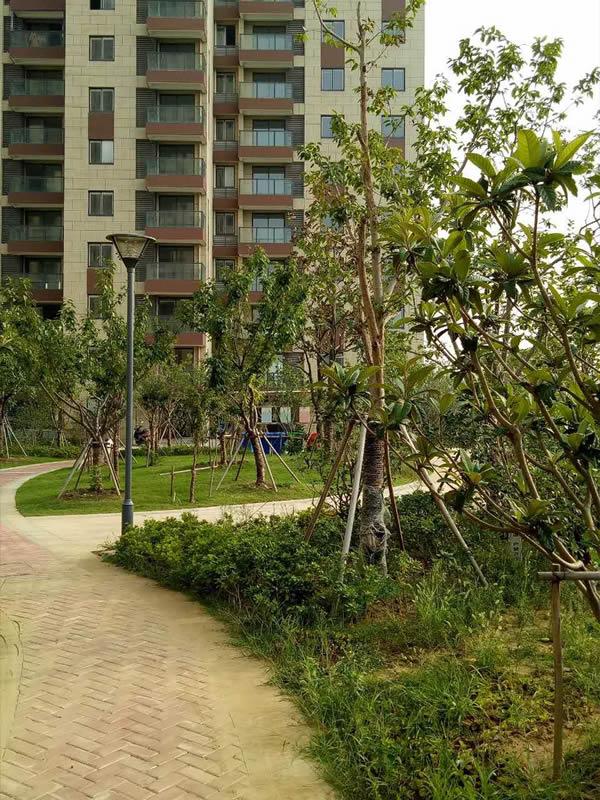 黄埭市政景观工程