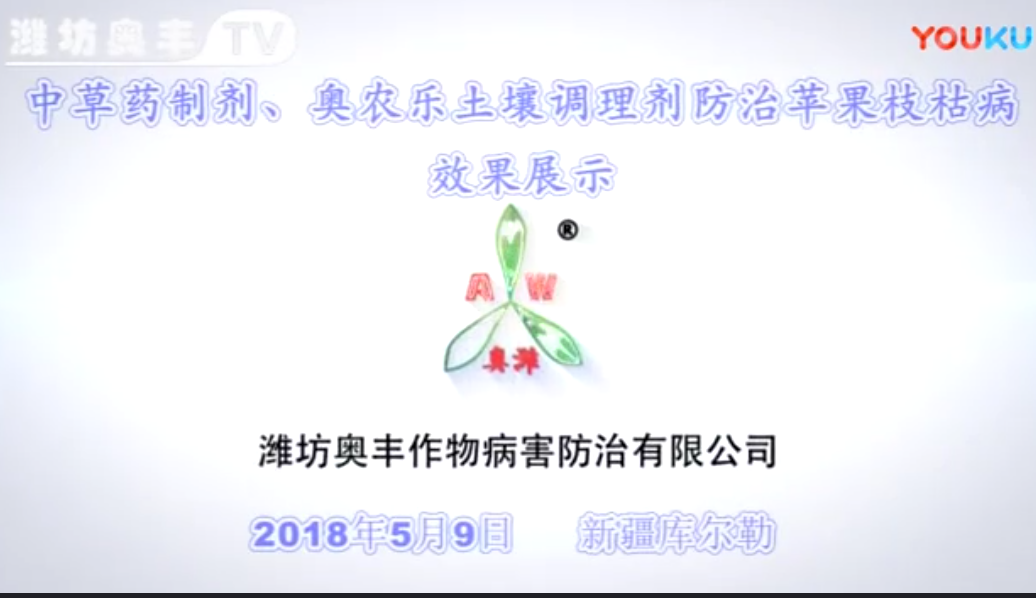 中草药制剂、奥农乐土壤调理剂防治苹果枝枯病效果展示(新疆库尔勒)