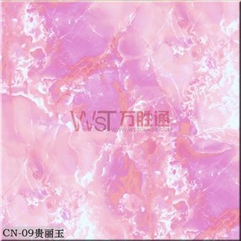 CN-09贵丽玉