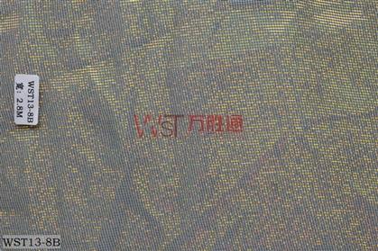 WST13-8B