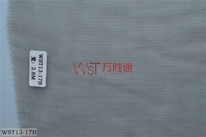 WST13-17B