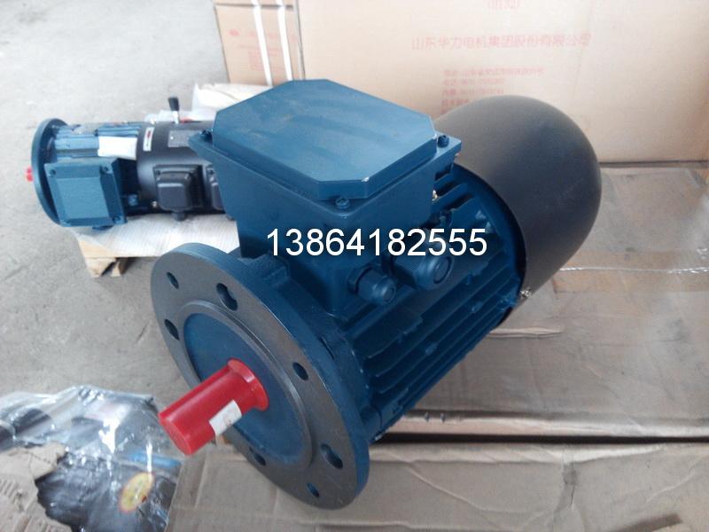 滨州YE2电机|销售滨州YE2-355M1-8-132电机厂