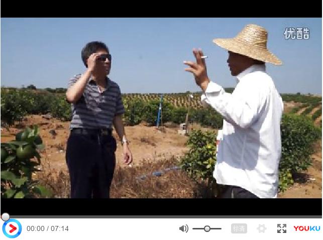 【视频】沃柑、茂谷柑黄叶灌根效果展示(广西武鸣区)