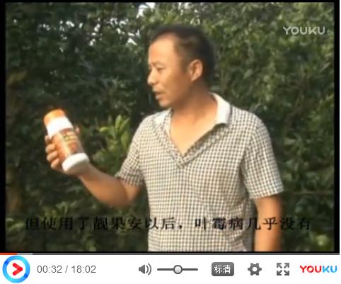 【视频】湖南邵阳易龙(雪峰蜜桔)