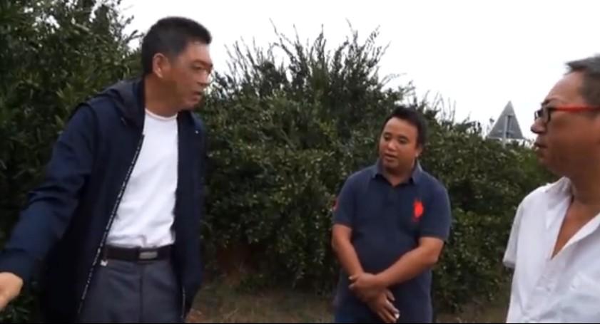 南丰蜜桔、赣南脐橙树脂病用药效果与防治方案(湖南郴州)