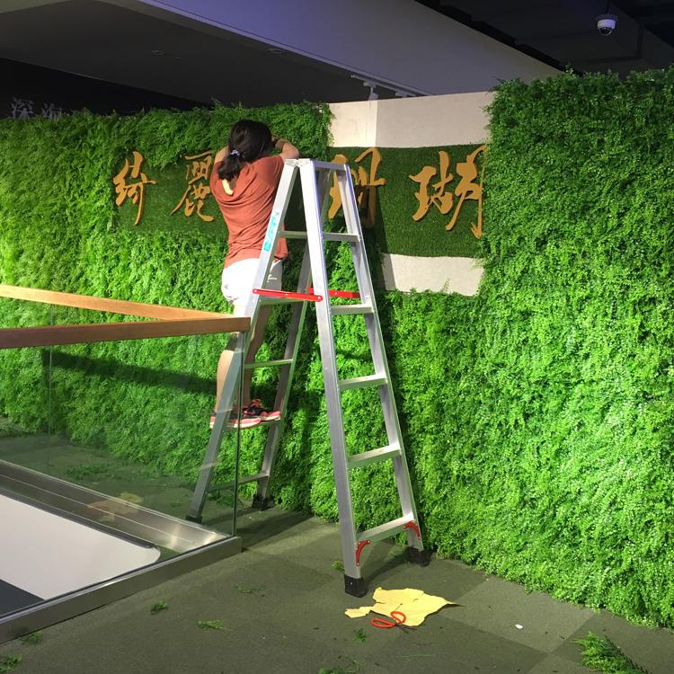 仿真植物墙1