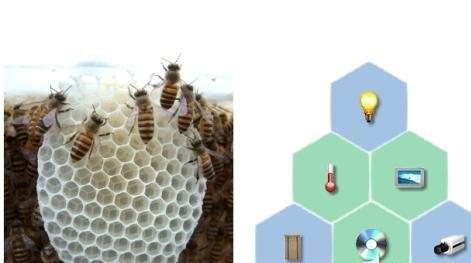 """抖动翅膀的蜜蜂 走进""""ZigBee"""""""