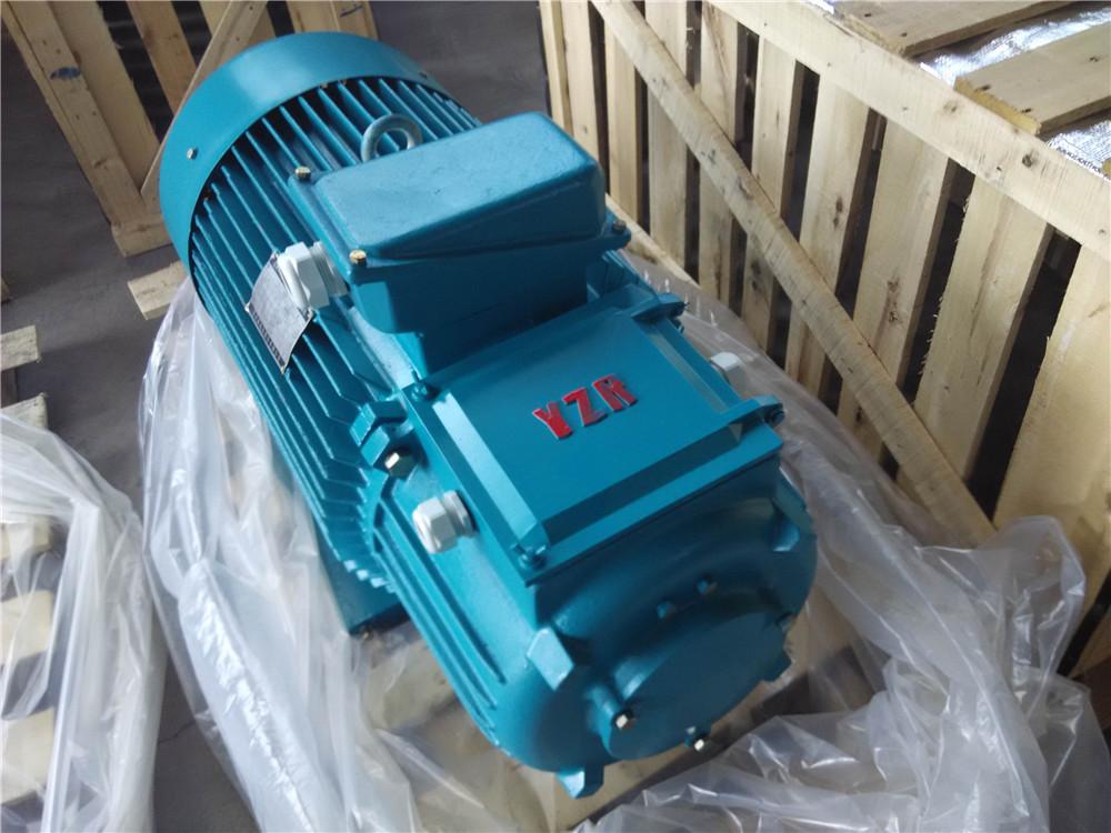YZR系列绕线转子电动机YZR起重电机频繁启动有振动的设备应用好