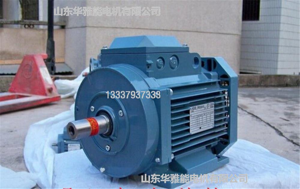 经典ABB电机|销售M3BP高性能电机外界环境有关参量的变化