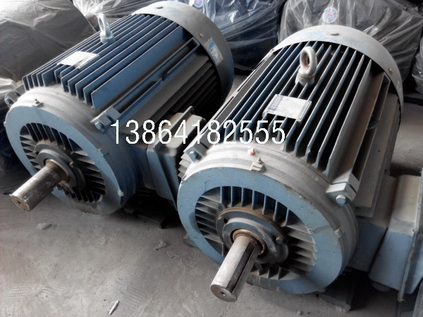 MN2电机|销售高压电机|猛牛MN2电机-衡水猛牛电机股份有限公司节能产品