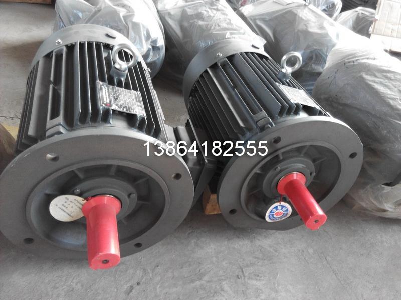 莱芜衡水YE2电机|销售莱芜YE2-200L-8-15电机