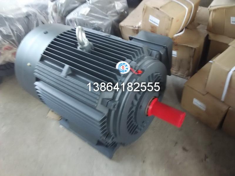 山东Y2电机|销售重庆衡水电机|济南Y2电机-衡水猛牛仓储销售中心