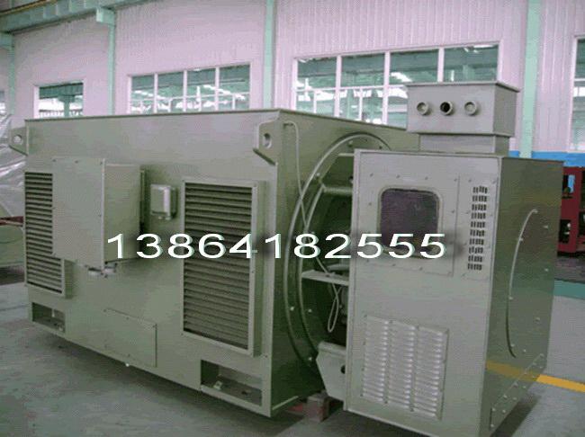 天津YL电机【高压】销售重庆YLKK高压电机【立式】配套华能国际实力雄厚