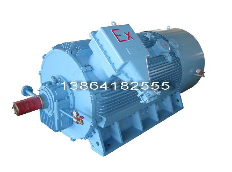 北京YKK电机【品牌】销售上海YKK高压电机-衡水电机品牌创造价值