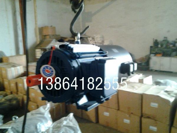 德州YE2电机|销售德州YE2-315L1-8-90电机国标