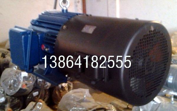日照YE2电机|销售日照YE2-315M-8-75电机诚信