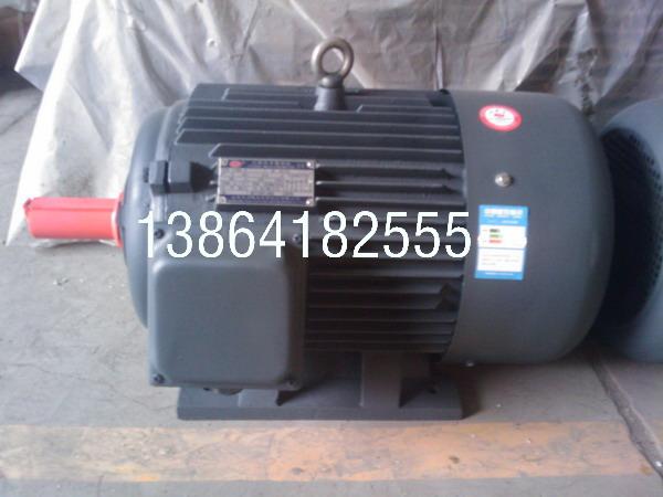 泰安YE2电机|销售泰安YE2-280M-8-45电机现货