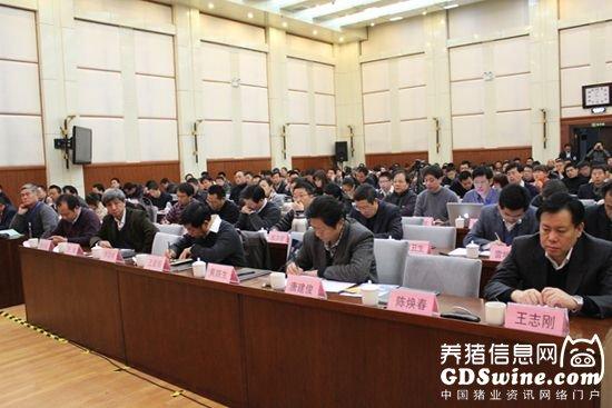 广东王将种猪有限公司