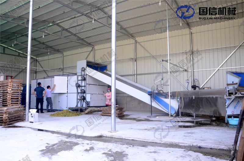 山东12米金银花烘干设备生产线