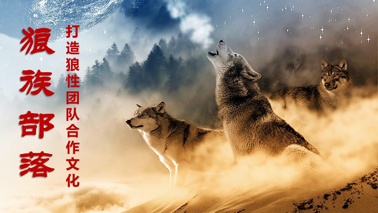 《狼族部落》打造狼性团队合作文化训练营