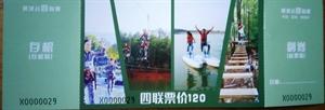 水上双人自行车