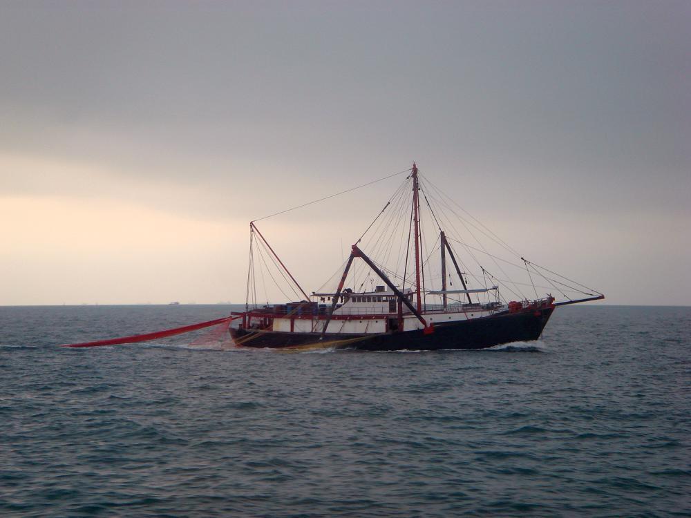 漁業鋼絲繩、船用鋼絲繩